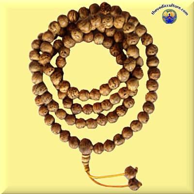 Bodhi Monk mala for meditation