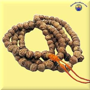Monk Bodhi mala for meditation