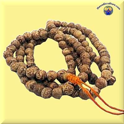 Monk Bodhi mala for meditation